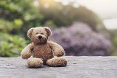 Teddy Bear Sitting On Footpath With Blurry Natural Background, Loneliness Brown Bear Doll Sitting Al poster