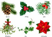 Plants, Christmas Decorations. Spruce, Holly, Yew, Mistletoe, Ivy, Poinsettia. 3d Realistic Vector S poster