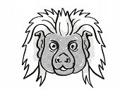 Retro Cartoon Mono Line Style Drawing Of Head Of A Cottontop Tamarin, A Small Monkey Species Found I poster