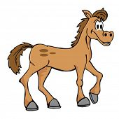 pic of buckskin  - illustration of hand drawn cartoon horse isolated on white - JPG
