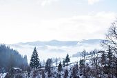 Winter Mountain Landscape. Mountains In The Snow. The First Snow In The Mountains. poster