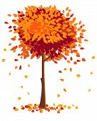 Tree Discards Golden Leaves In Late Autumn. Color Vector Illustration Isolated On White poster