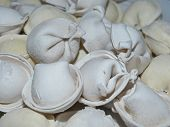 Dumplings Siberian Frozen. Russian Dumplings Is A Dish In The Form Of Cooked Products From Fresh Dou poster