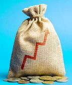 Money Bag With Up Arrow. Successful Business Concept. Profitability And Performance. Increase Income poster