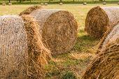 Haystack Harvest Field Landscape. Haystack Agriculture Field Landscape. Agriculture Field Haystacks. poster