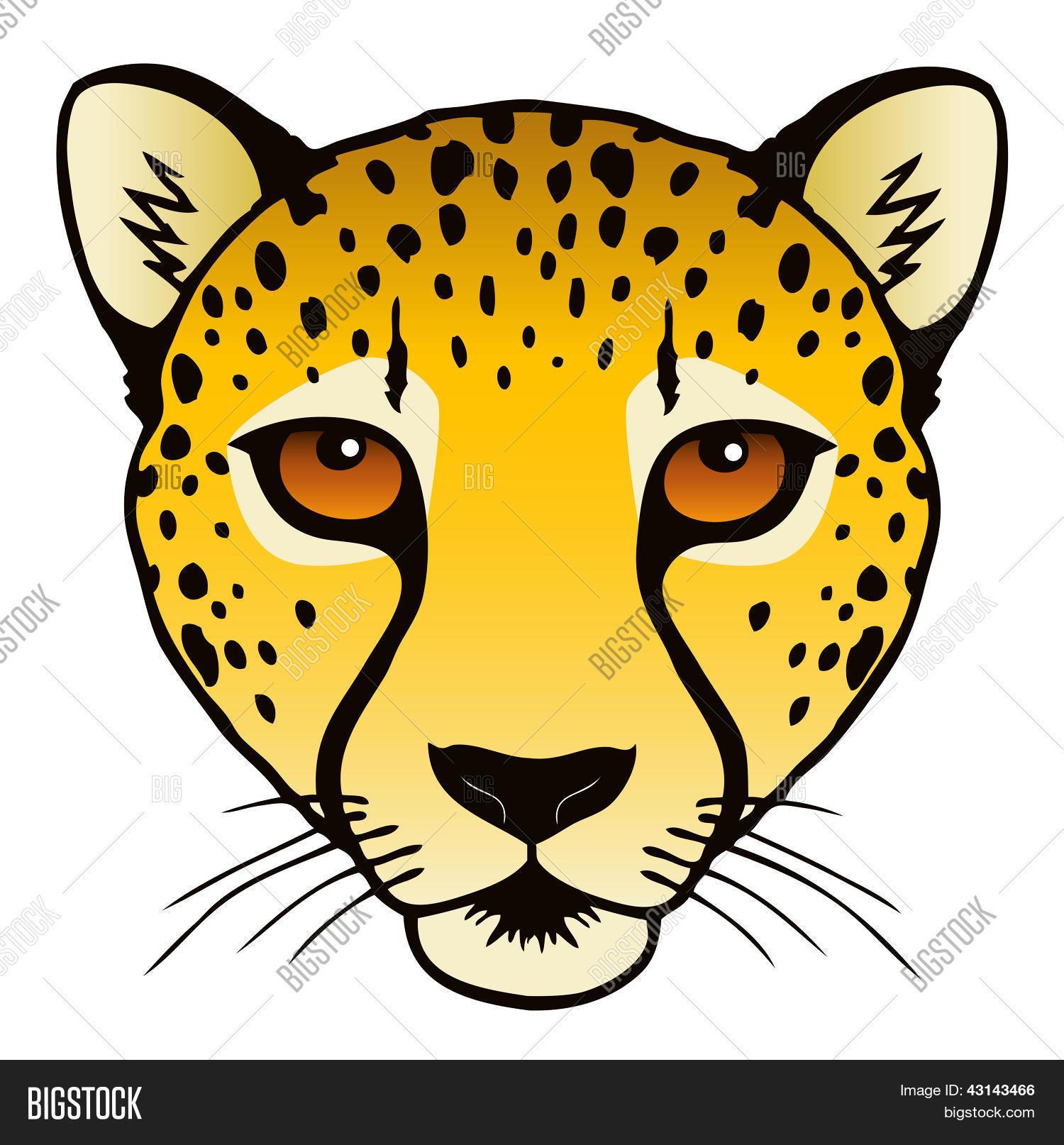 cheetah face mask template - gepard kopf stock vektorgrafiken stockfotos bigstock