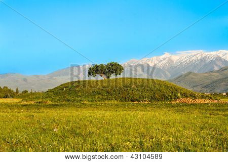 Single Tree And Mountains, Sky In Kazakhstan, Almaty, Road In Issyk. Image At Spring