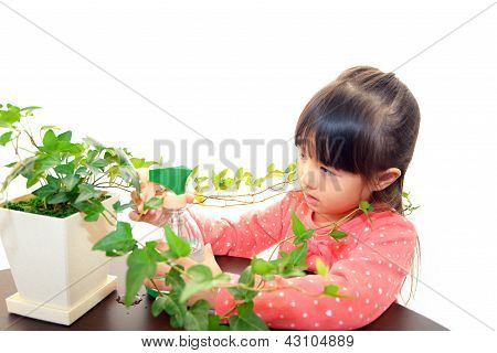 Little Asian girl with plant