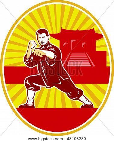 shaolin kung fu martial arts karate master