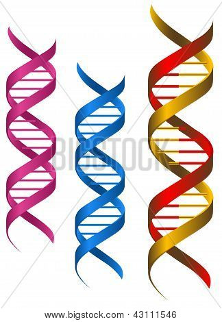DNA-elementen