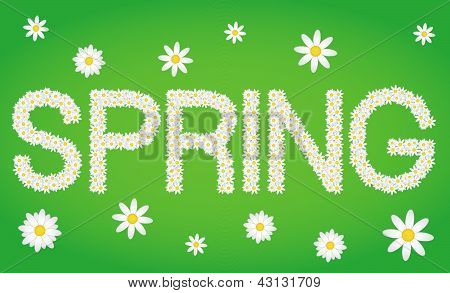 Spring Tag Composed From Daisy Flowers