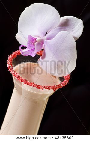 Pink Cocktail With Orchid