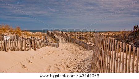 Caminho para a praia de Cape Henlopen State Park, Delaware.