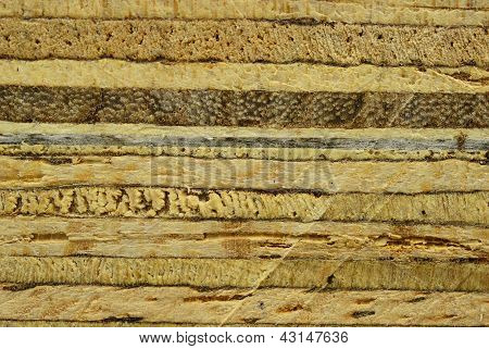 The Plywood Texture After Sawing By Saw Background