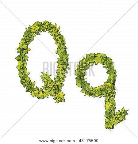 Leaf Font Q