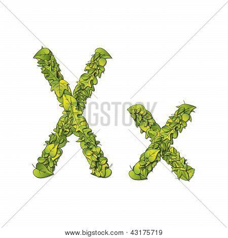 Leaf Font X