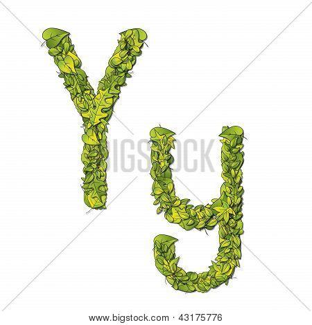 Leaf Font Y