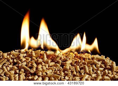 Burning Wood Chip Biomass Fuel A Renewable Alternative Source Of Energy