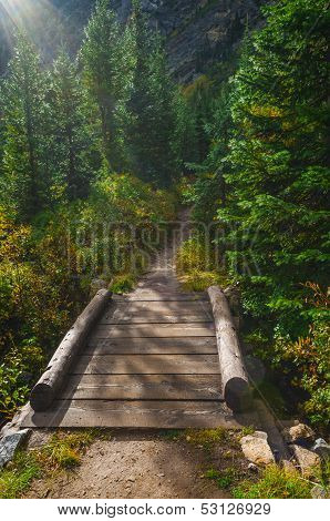 Footbridge On String Lake Trail