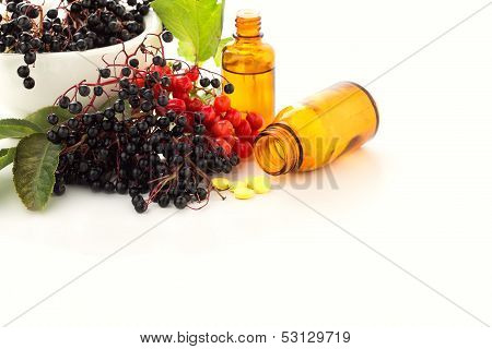 Elderberry In Mortar, Viburnum, Medicines. Homeopathy Concept.