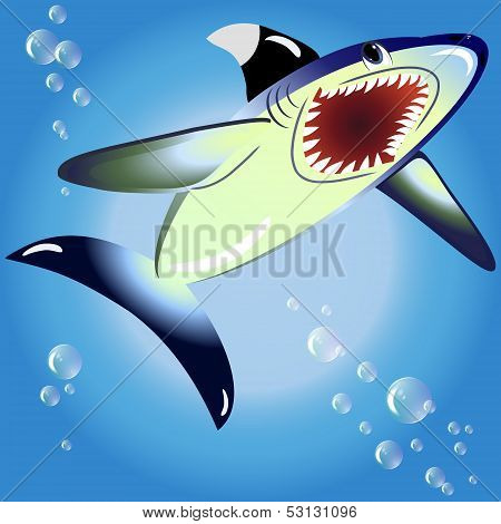 EPS10 vector illustration. shark