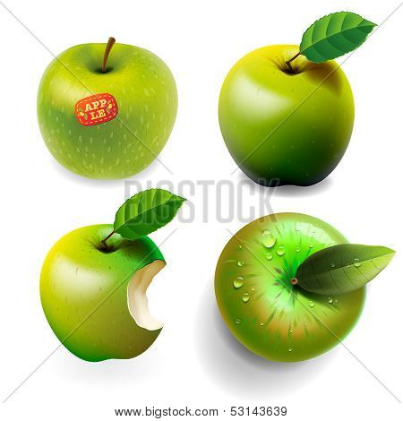 Set of green ripe Apples, four various view