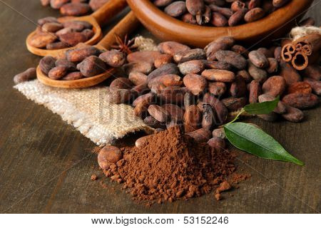 Cocoa beans in bowl, cocoa powder and spices on wooden background