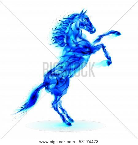 Blue fire horse rearing up.