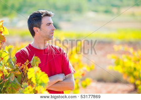 Harvester winemaker farmer proud of his vineyard in autumn golden red leaves at Mediterranean