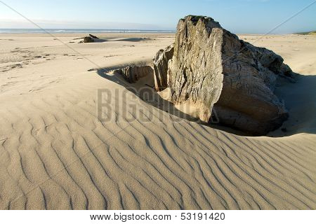 old tree stump on rippled sand, Oregon