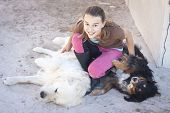 image of tickling  - A teenage girl tickling two  cuddly dogs - JPG