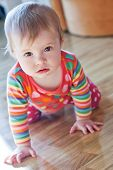 stock photo of creeping  - baby to crawl on the floor and with interest looking at the camera - JPG