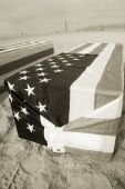 Arlington West Coffin Sepia