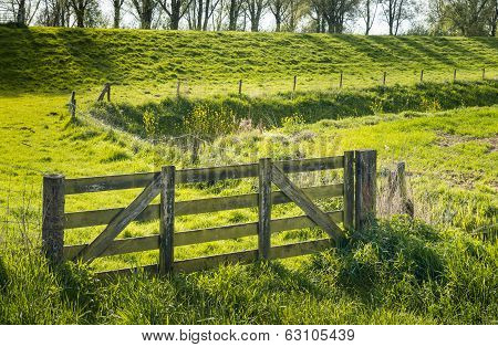 Closed Wooden Gate In A Green Rural Landscape