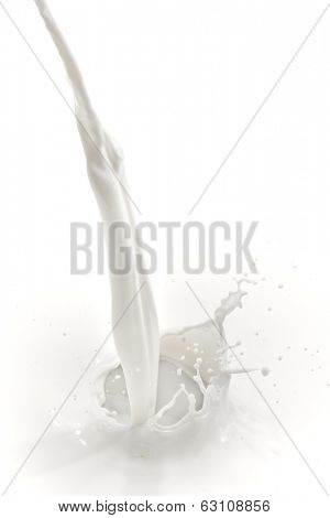 splashing milk on white background