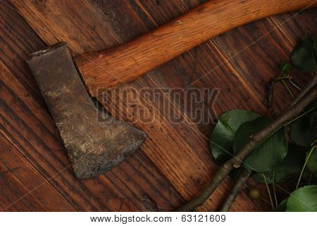 Antique hatchet with small tree branch on rustic dark wood background.  Low key still life with directional natural lighting for effect.