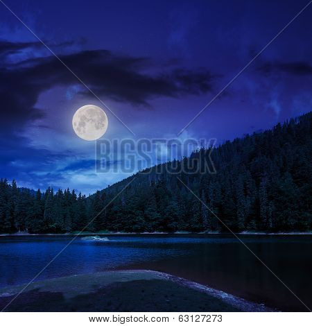 Pine Forest And Lake Near The Mountain At Night