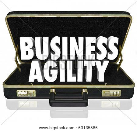 Business Agility Words Briefcase Presentation Proposal Adapt