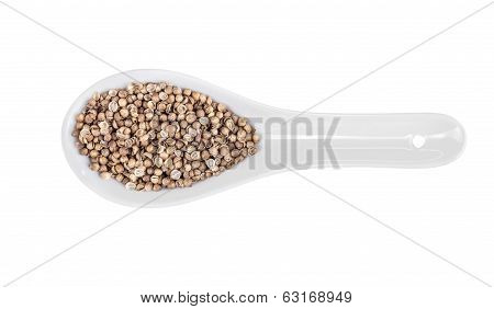 Medley Of Peppercorns On White Porcelain Spoon