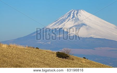 Mountain Fuji in winter season from Izu ,Kanagawa prefecture