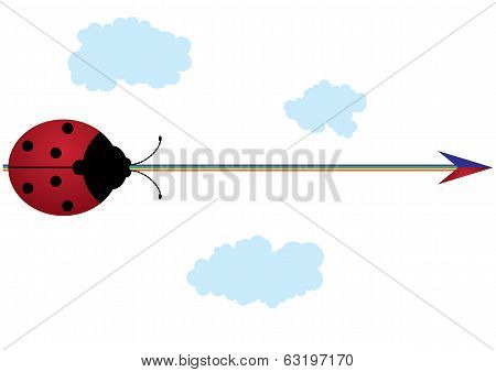 Ladybird, Rainbow And Arrow