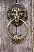 Lion Head, Door Knocker