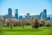 stock photo of skyscrapers  - Sunny Denver Skyline - JPG