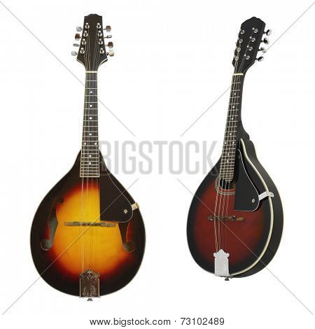The image of mandolin under the white background