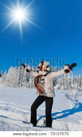 Midwinter Sunshine Near Snowy Trees