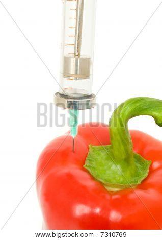 Genetically Modified Object - Pepper