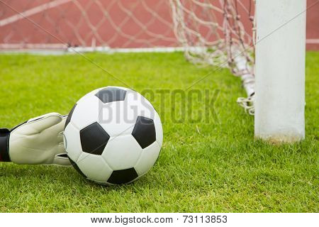 Soccer Goalkeeper Hands Save Goal
