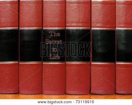 Row of old red leather books on a shelf with blank covers