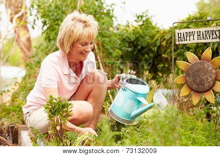 Senior Woman Working On Allotment
