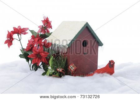 A wintry still life composed of a bird house, cardinal and red poinsettias.  On a white background.